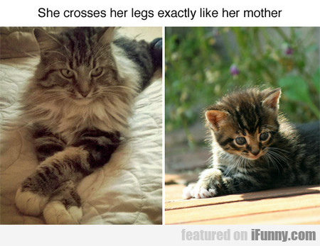 She Crosses Her Legs Exactly Like Her Mother