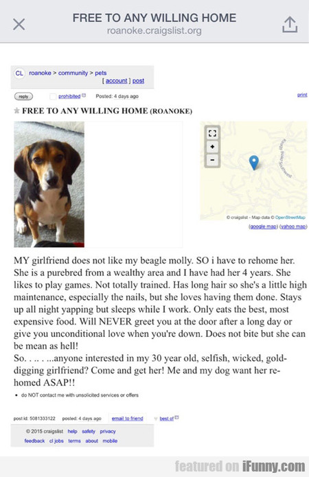 Another Craigslist's Gem