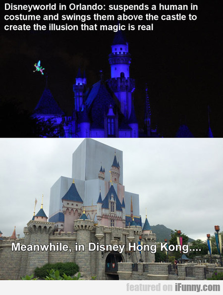 Chinese Knock-off, Disneyworld Edition