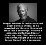 Morgan Freeman Is Really Concerned