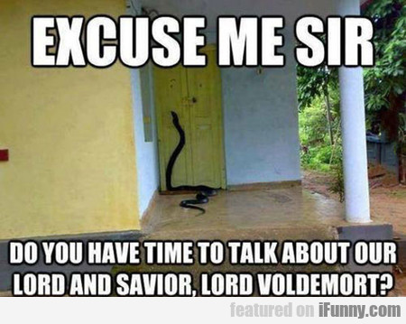 Harry Potter Missionaries