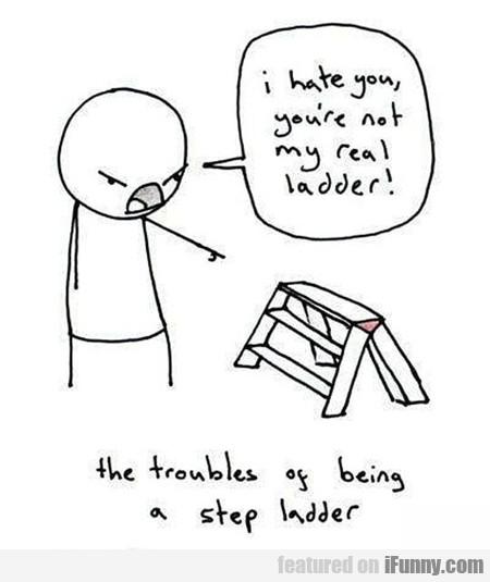 Ladder Problems