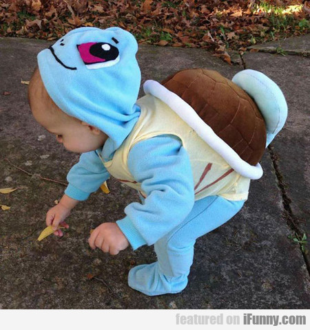 Squirtle Used Adorableness Attack