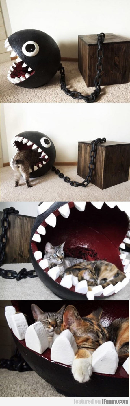 Chomp Chomp Kitty Bed
