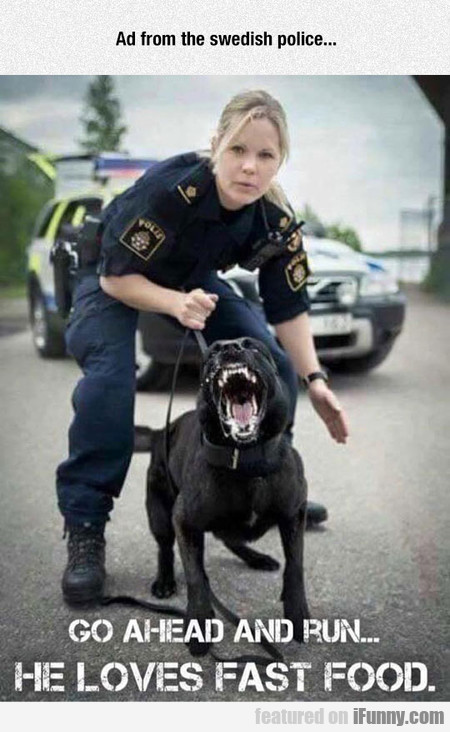 Swedish Police Doesn't Mess Around