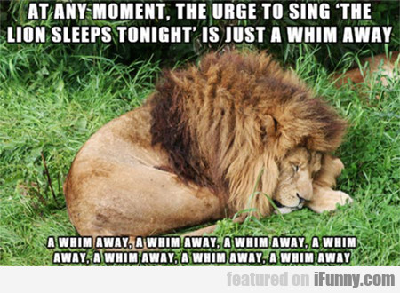 The Urge To Sing