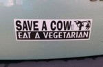 Best Bumper Sticker Out There
