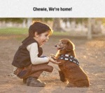 The Cutest Han Solo And Chewie Cosplay