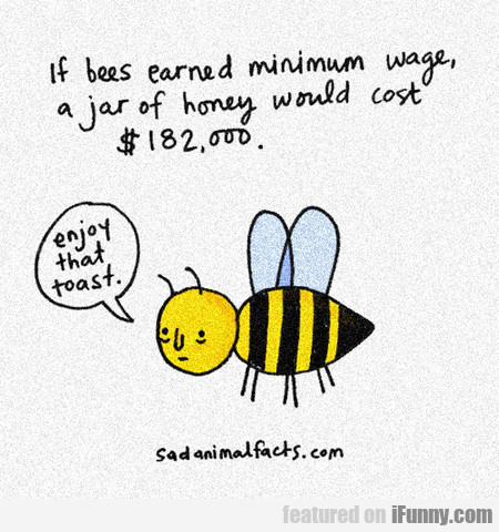 If Bees Were Paid For Their Job