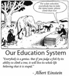 Our Education System In A Nutshell