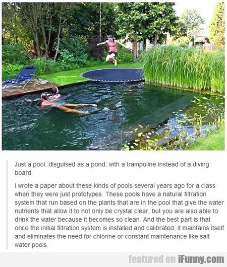 Just A Pool, Disguised As A Pond