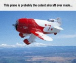 Cutest Aircraft Ever Made