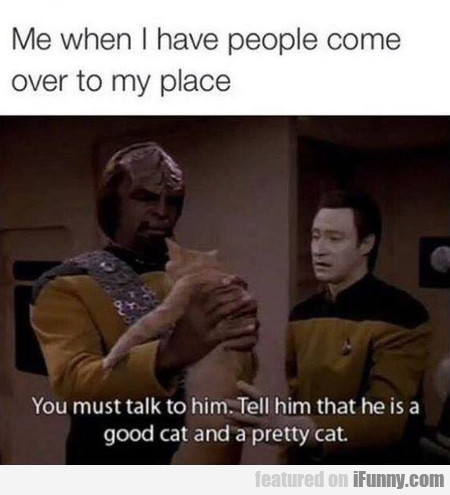 You Must Talk To The Cat
