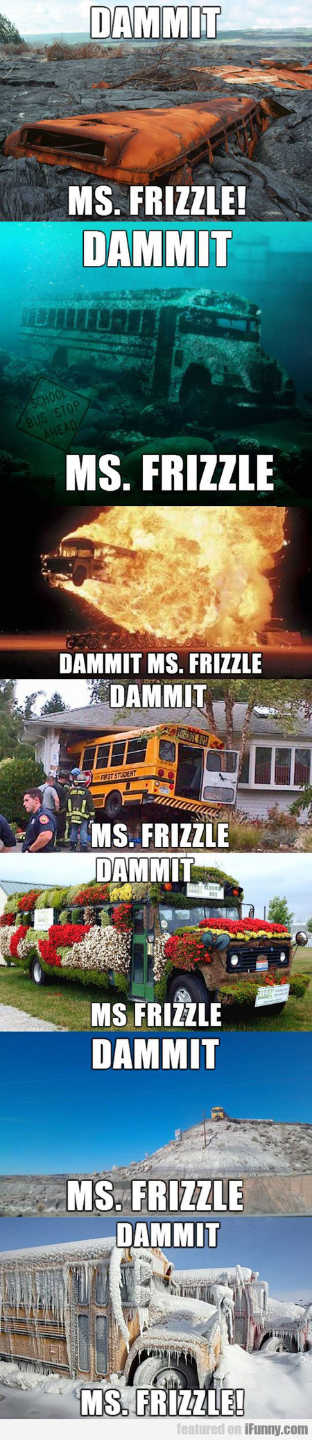 Ms. Frizzle Is At It Again