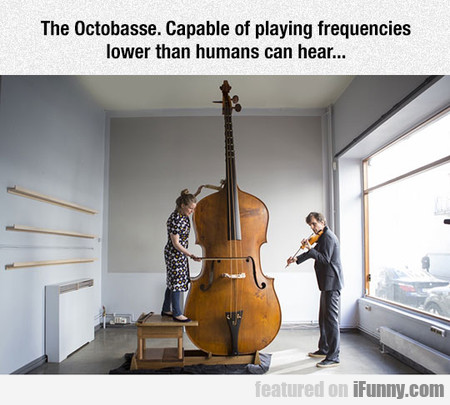 That Is One Big Instrument