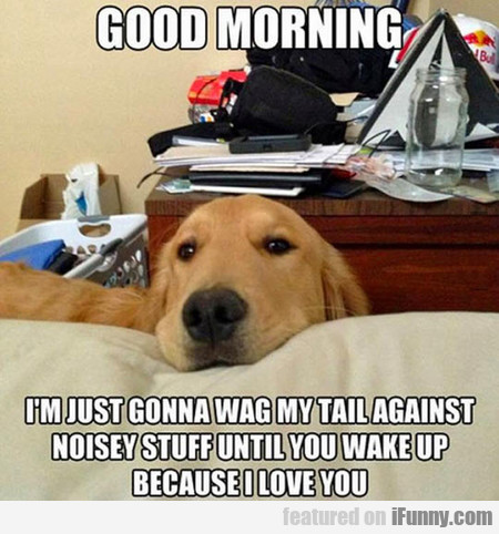 Dog Owners Can Relate