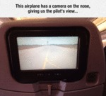 The Pilot's View