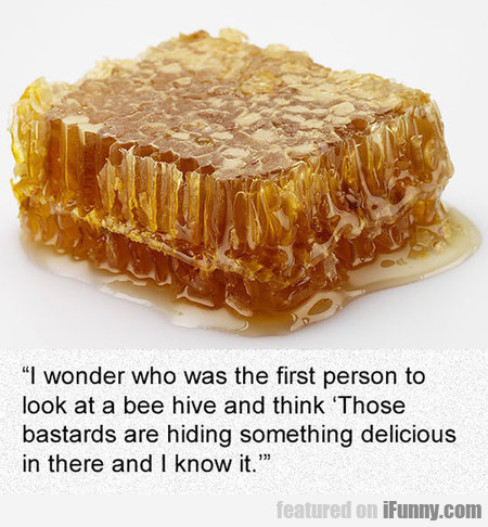 The Person Who Discovered Honey