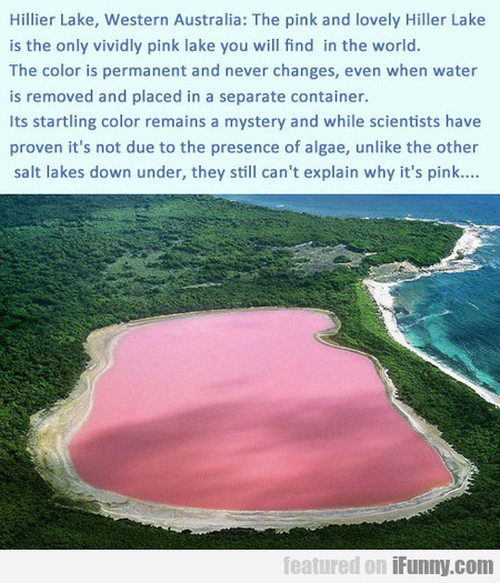 The Only Pink Lake In The World