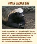 Honey Badger Plans