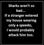 Sharks Aren't Really That Bad