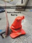 The Sorting Cone Knows Best