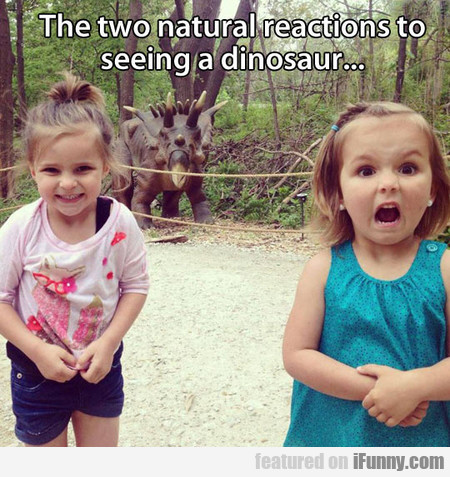 Two Priceless Reactions