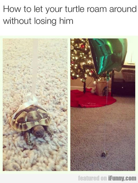 Never Lose Your Turtle Again