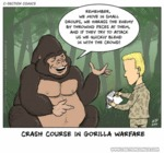 Crash Course In Gorilla Warfare