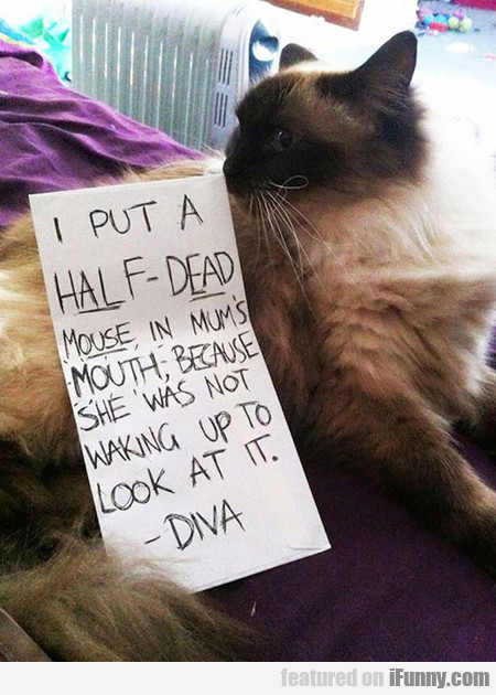 Ungrateful Human, It Was A Gift
