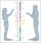 Naming Colors - Girls Vs. Guys