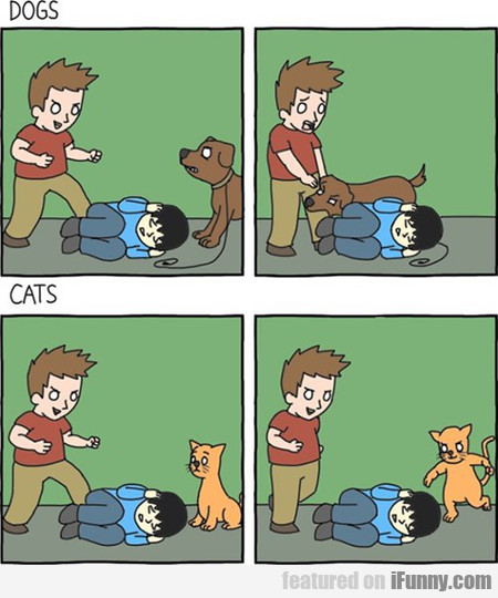 The Definitive Dogs Vs. Cats Comic