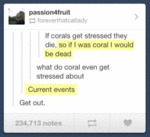 When Corals Get Stressed