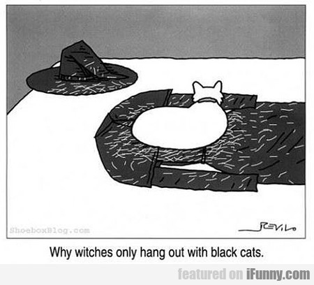 Witches And Black Cats