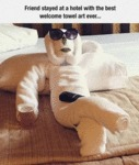 Welcome Towel Art
