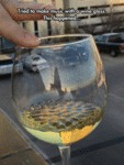 You Can See The Music Inside This Wine Glass