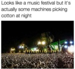 Looks Like A Music Festival But It's Actually Some