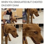 When You Graduated But Cheated On Every Exam