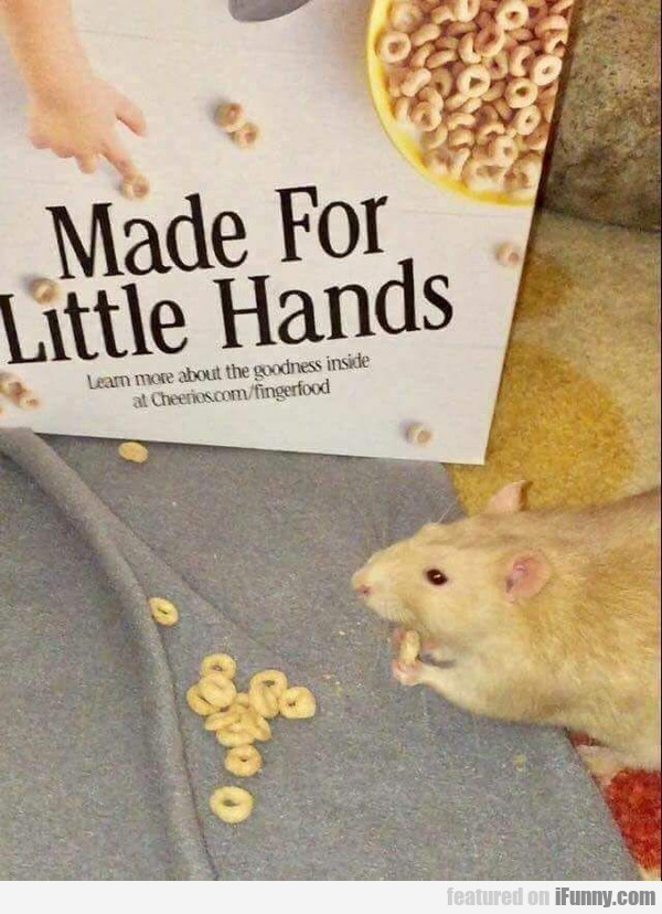 Made for little hands