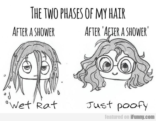 The Two Phases of my hair. After a shower...