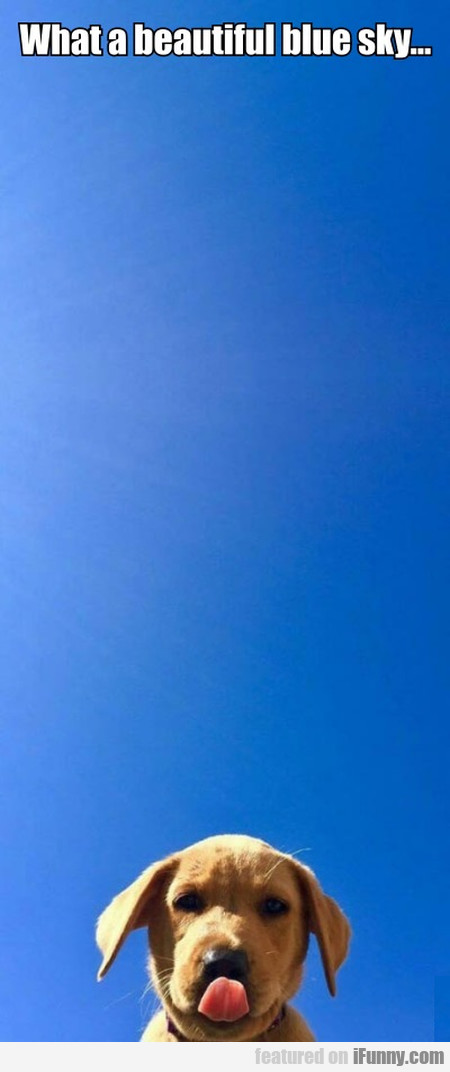 What a beautiful blue sky...