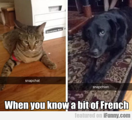 When You Know A Bit Of French
