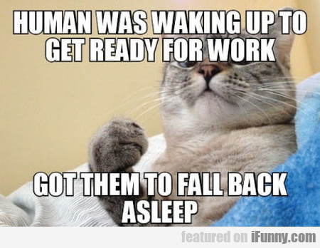 Human Was Waking Up To Get Ready For Work