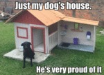 Just My Dog's House. He's Very Proud Of It.