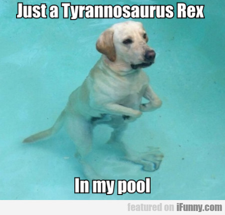 Just A Tyrannosaurus Rex In My Pool