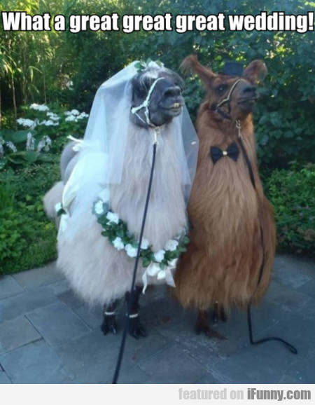 What A Great Great Great Wedding