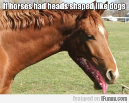 If Horses Had Heads Shaped Like Dogs...