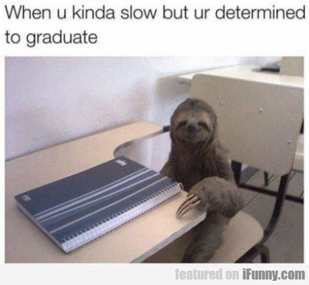 When U Kinda Slow But Ur Determined To Graduate