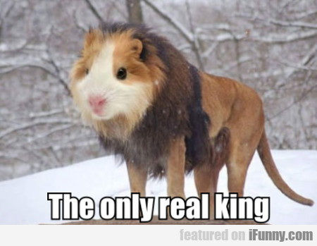 The only real king
