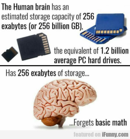 The human brain has an estimated storage...